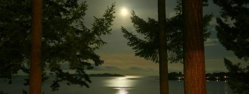 Christmas moonlight in Parksville